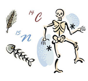 Bone Dating
